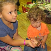 aldington-playgroup-1cc